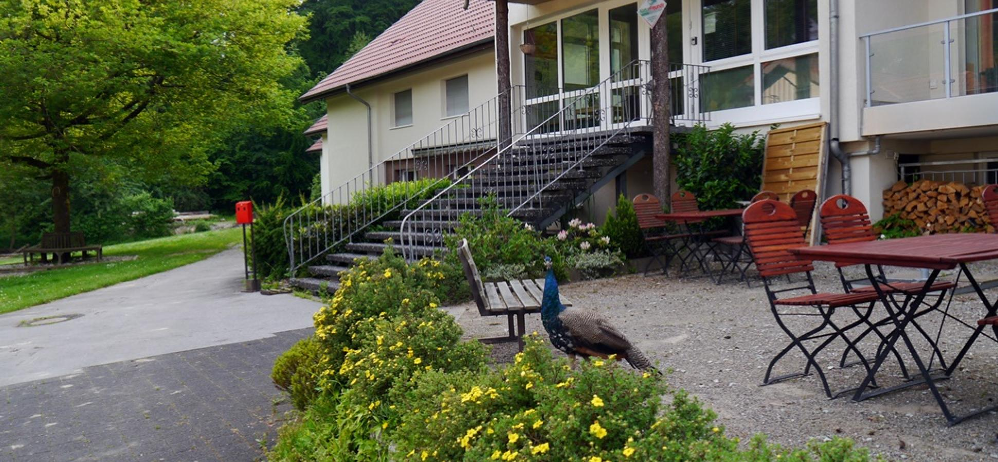 Terrasse Naturfreundehaus Teutoburg